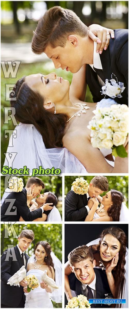 Свадьба, жених и невеста / Wedding, bride and groom - Raster clipart