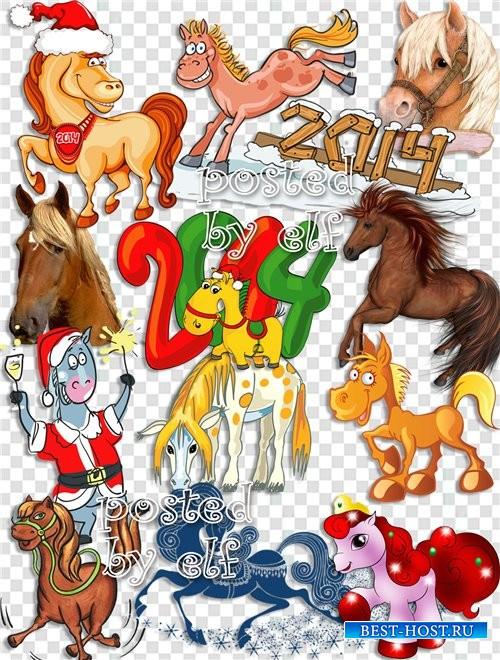 Лошади - символ 2014 года на прозрачном фоне
