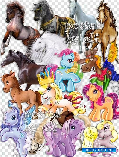 Лошади - символ 2014 года без фона (часть II)
