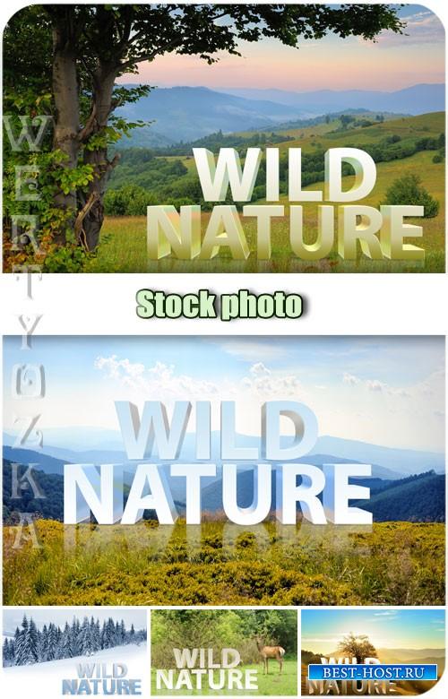 Дикая природа, пейзажи / Wild nature, landscapes - Raster clipart