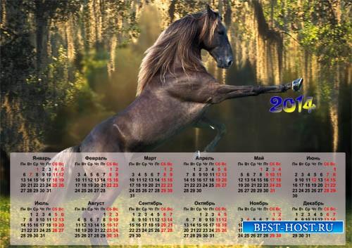 Календарь на 2014 год - Прикольная лошадь » Шаблоны для Фотошопа ...