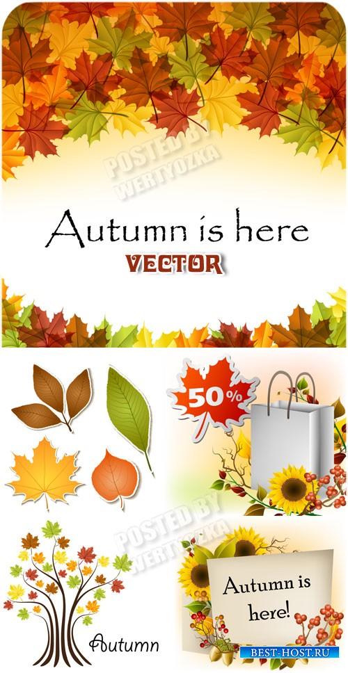 Осенние фоны, листья, цветы, деревья / Autumn backgrounds - vector