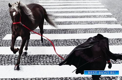 Шаблон для девушек - Прогулка с прекрасной лошадкой на зебре