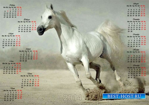 Календарь - Прекрасная лошадь
