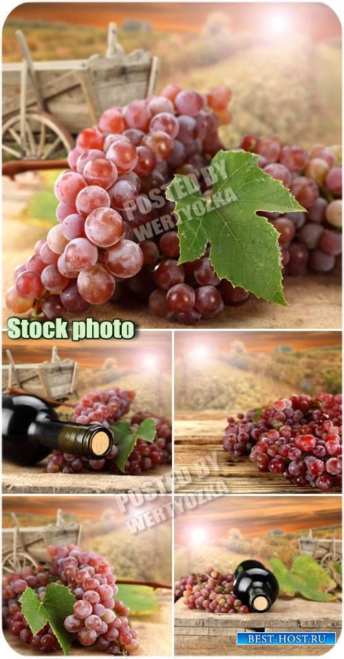 Виноград и бутылка вина на фоне рассвета / Grapes - stock photos