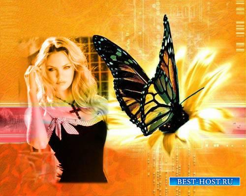 Рамка для фотошопа - Цифровая бабочка