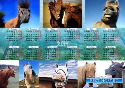 Календарь на 2014 год - Позитивные лошади