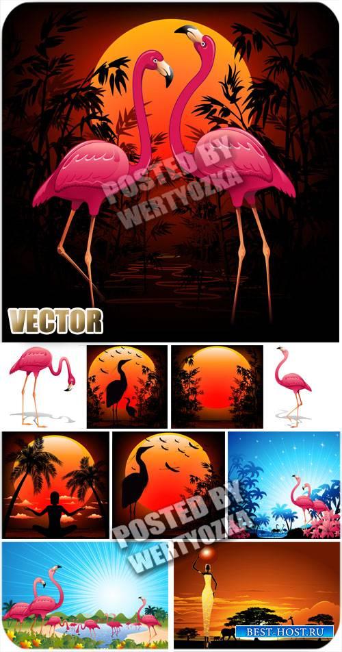 Розовый фламинго, природа / Pink flamingos, nature - stock vector