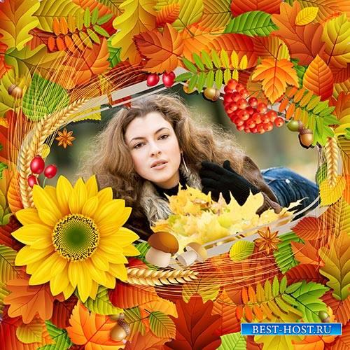 Осенняя рамка для фотошопа с красивыми листьями, пшеницей и рябиной