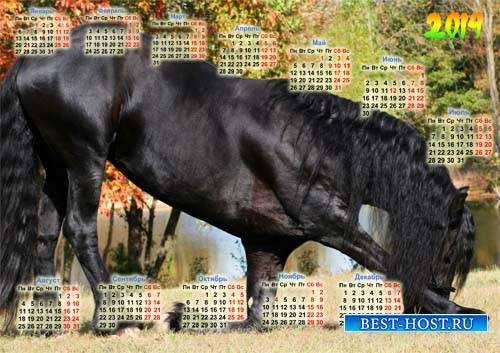 Настенный календарь - Красивая лошадь кланяется