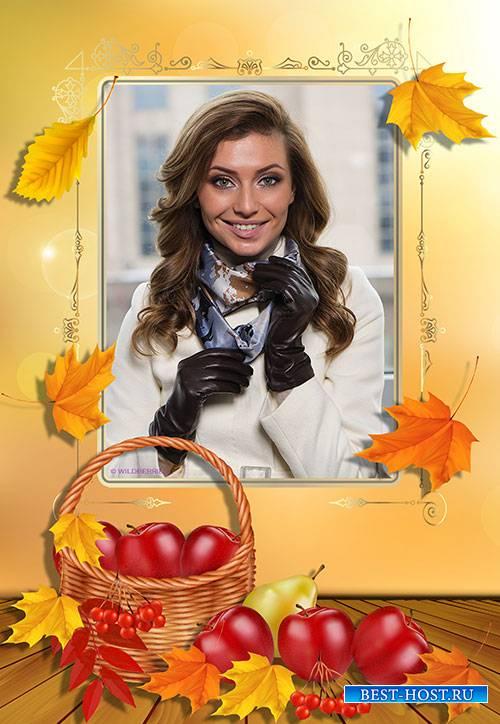 Осенняя фотошоп рамка с красными яблоками в корзине