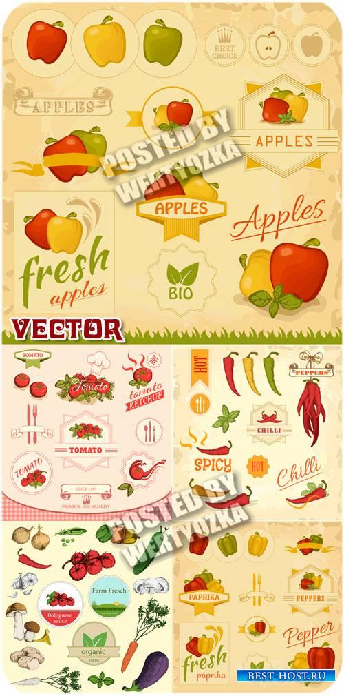 Винтажные этикетки с различными овощами / Vintage labels - stock vector