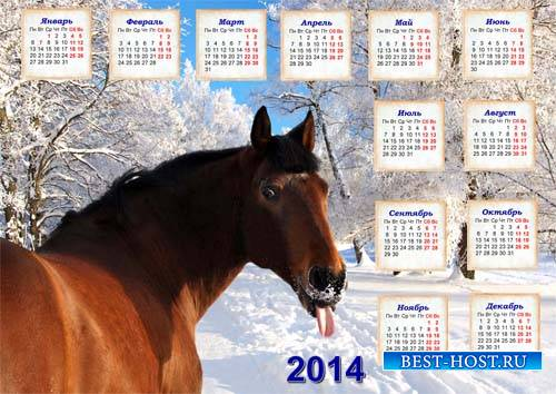 Календарь на 2014 год - Прикольная лошадь
