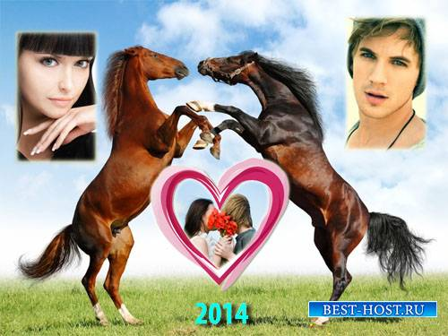 Рамка для фотомонтажа - Две игривых лошади