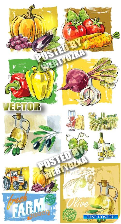 Овощи, сбор урожая / Vegetables, harvesting - stock vector