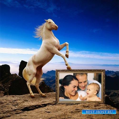 Рамка для фотографии - Красивая лошадка на фоне природы
