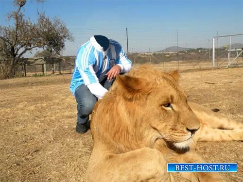 Шаблон для фотомонтажа - Фотография с большим львом