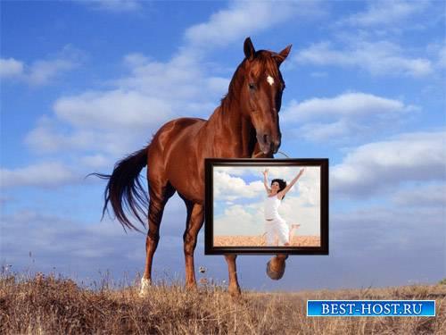 Рамка для фотографии - Лошадь держит картину с вашим фото