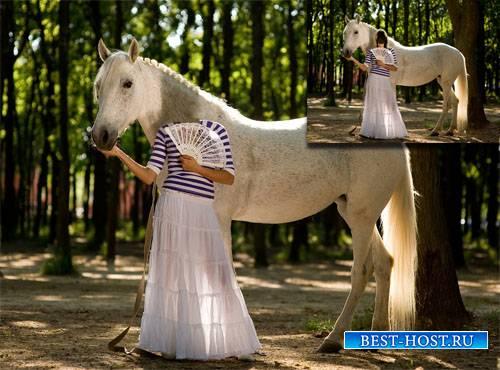 Шаблон для photoshop - Фотосессия с шикарной лошадью в парке