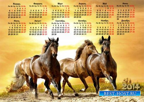 Календарь 2014 - Шикарные лошади