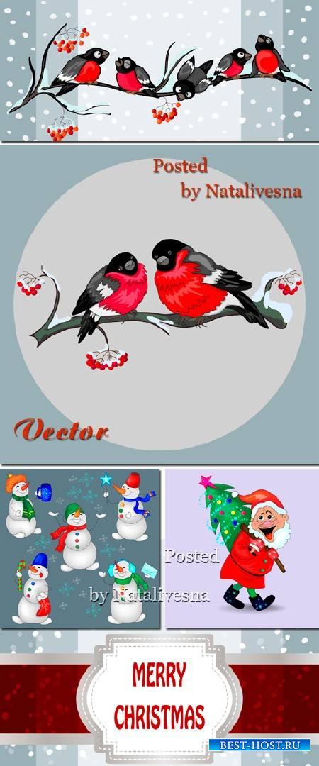 Снегири на веточках - Новогодние векторные фоны