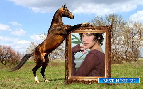 Рамка для фото - Вороной держит ваше фото