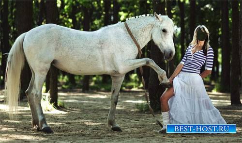 Шаблон для фотомонтажа - Фото с красивой лошадкой