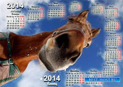 Календарь 2014 - С радостной лошадкой
