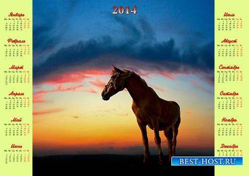 Календарь - Лошадь на красивом закате
