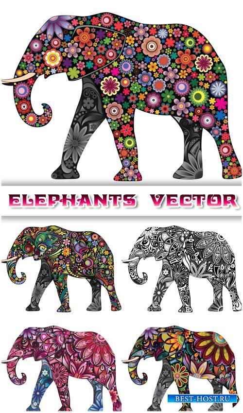 Слоны, креатив, цветочные узоры - вектор