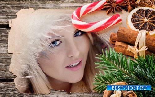 Рамка для фотошопа - Рождественская открытка с елкой и сладостями