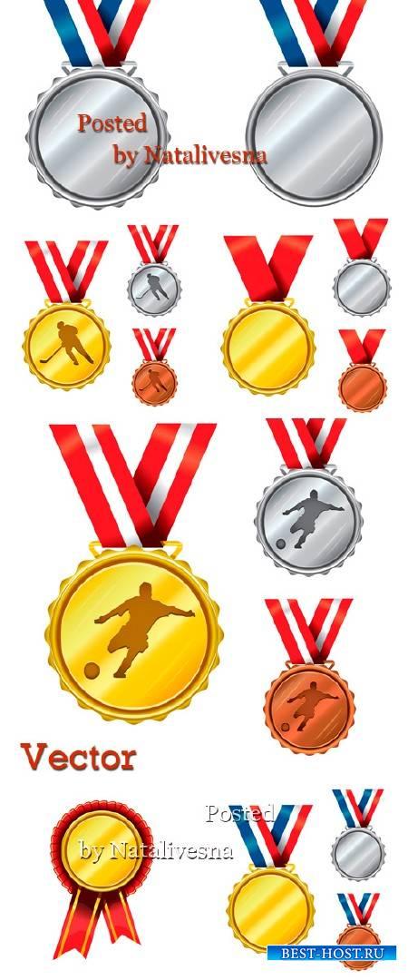 Медали, награды  в Векторе