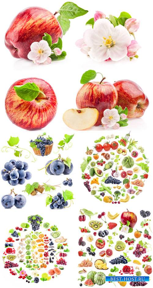 Свежие фрукты, яблоки, виноград - сток фото
