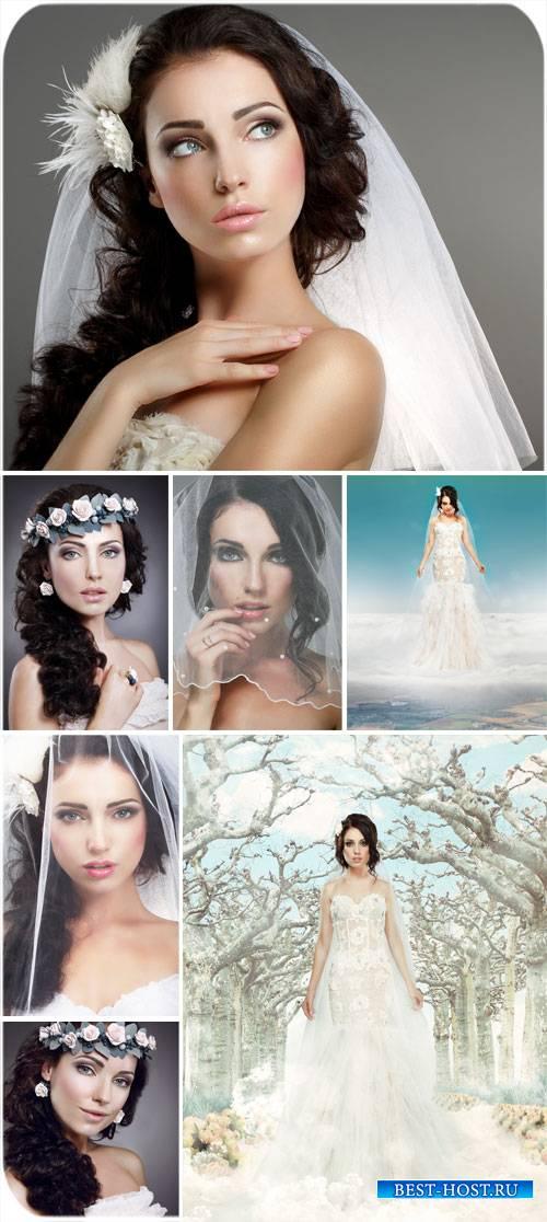 Невеста, свадебное платье и фата - сток фото