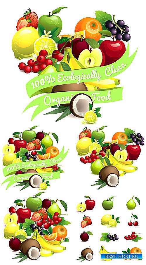Фрукты, сердце из свежих фруктов - вектор
