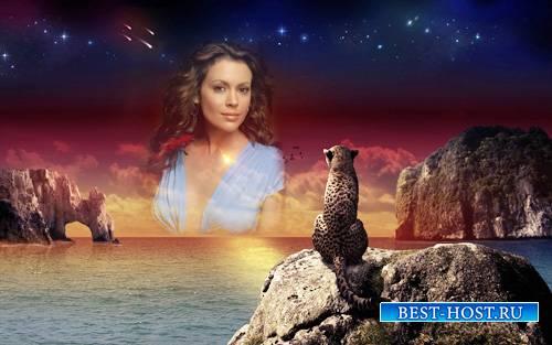 Рамка для фотографии - Леопард у моря на закате смотрит на вас