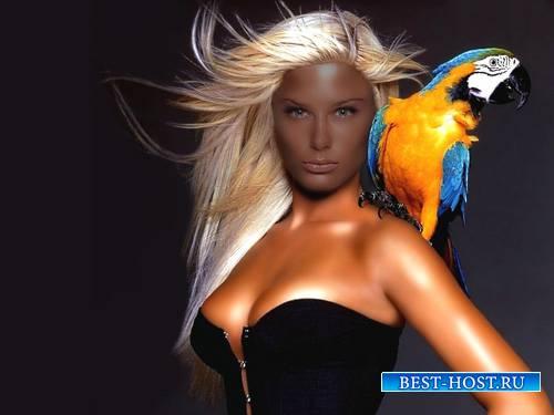 Шаблон для Photoshop - Фотосессия с большим попугаем