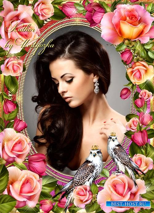 Рамка для фотошопа - Королевский ястреб и розы