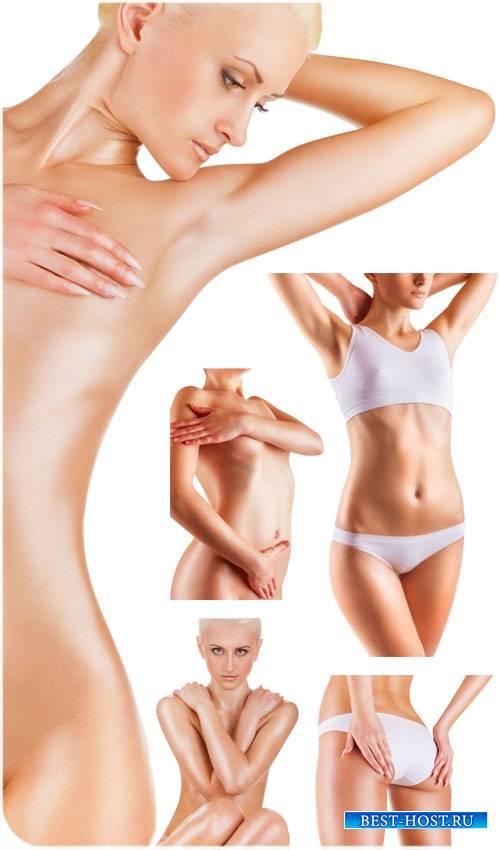 Женская фигура, красивое тело - сток фото
