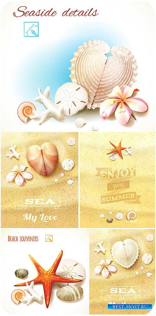 Морские фоны в векторе, цветы франжипани, ракушки на песке