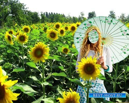 Женский шаблон - Милашка в поле подсолнухов