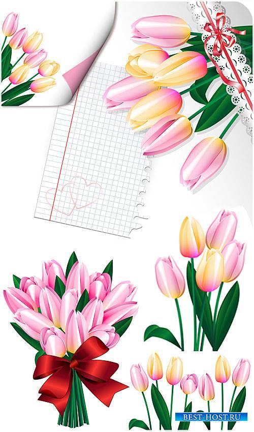 Тюльпаны, весенние цветы в векторе