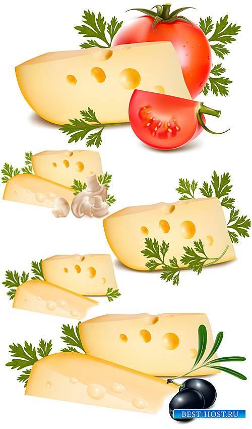 Сыр с томатами, оливками и грибами - вектор