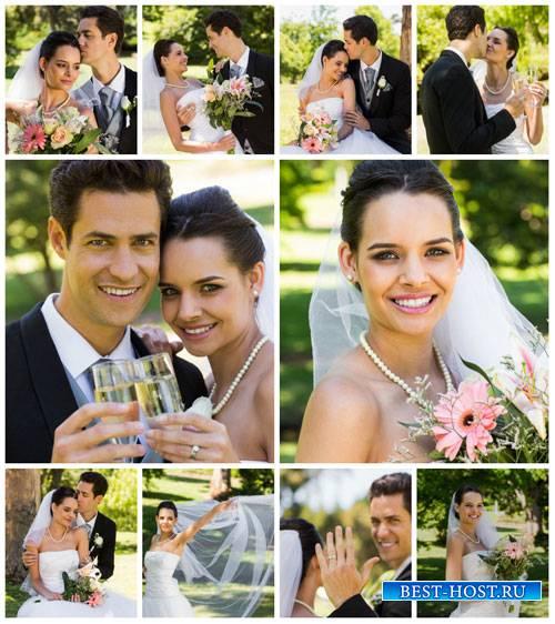 Свадьба, жених и невеста - сток фото