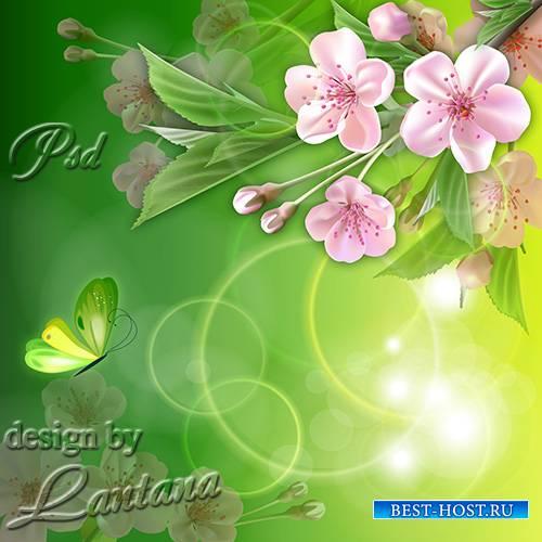 PSD исходник - Лучше нету того цвету, когда яблоня цветет