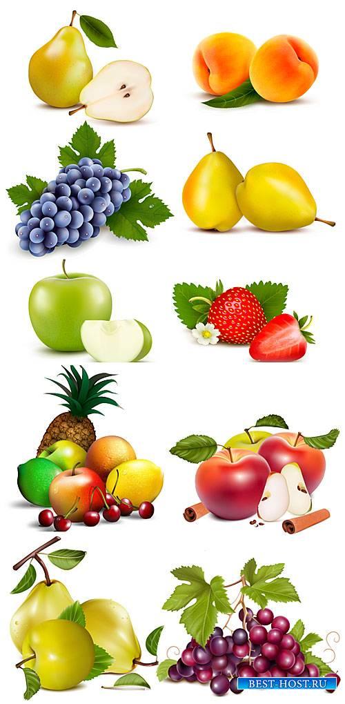 Свежие фрукты и ягоды в векторе, виноград, груша, клубника, ананас, яблоко  ...