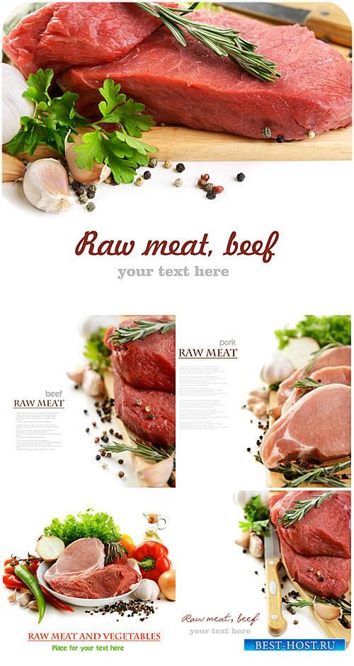Свежее мясо с зеленью и специями / Fresh meat with herbs and spices - Stock ...