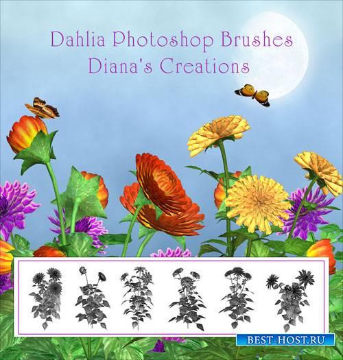 Кисти для фотошопа Нежные цветы