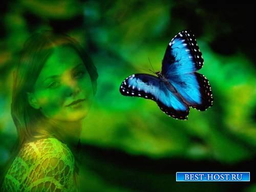 Рамка для фотографии - Яркие чудеса природы
