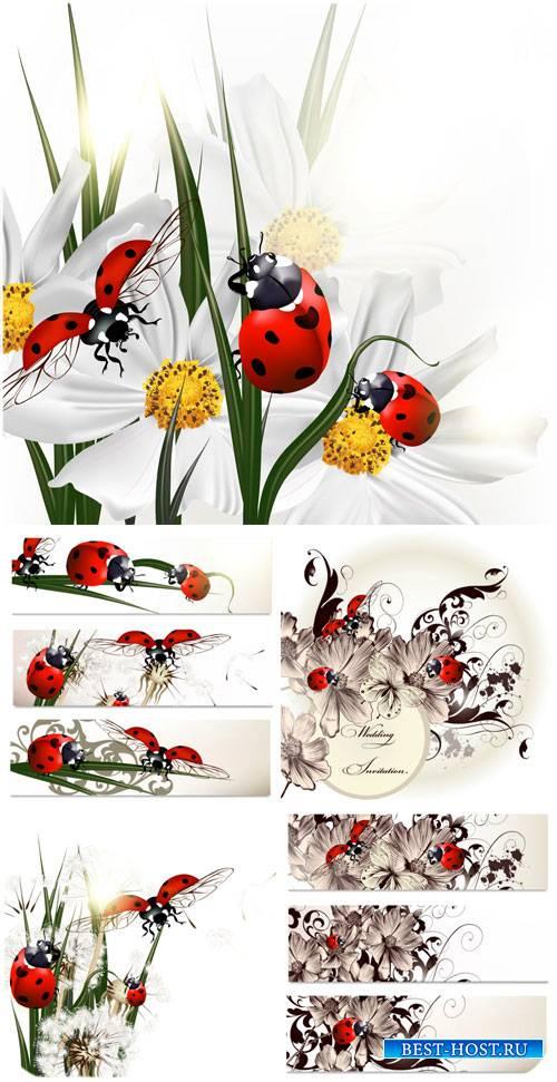 Цветы и божьи коровки, баннеры и фоны в векторе / Flowers and ladybugs, ban ...